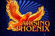 Играть в Arising Phoenix