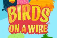 Играть в Birds On A Wire