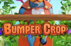 Играть в Bumper Crop