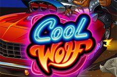 Играть в Cool Wolf