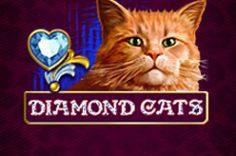 Играть в Diamond Cats