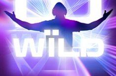 Играть в DJ Wild