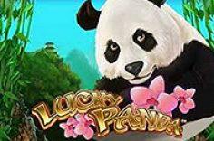 Играть в Lucky Panda
