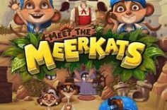 Играть в Meet the Meerkats