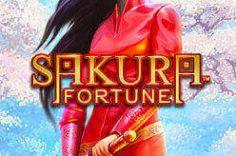 Играть в Sakura Fortune