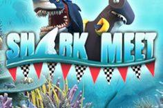 Играть в Shark Meet