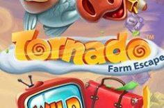Играть в Tornado Farm Escape