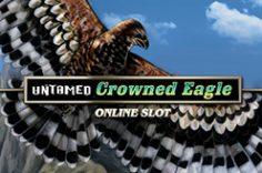 Играть в Untamed Crowned Eagle