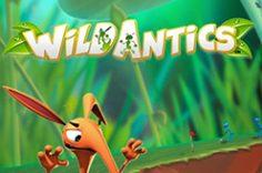 Играть в Wild Antics