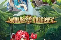 Играть в Wild Turkey