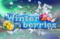 Играть в Winterberries