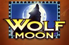Играть в Wolf Moon